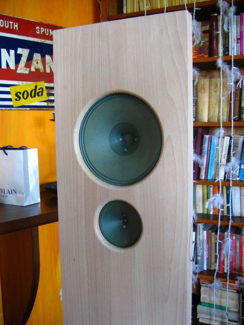 opoen baffle alnico speakers project 12